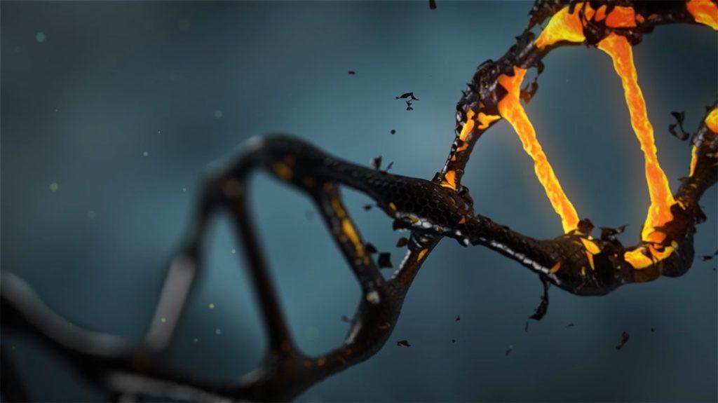 Recreaciu00f3n de una molu00e9cula de ADN