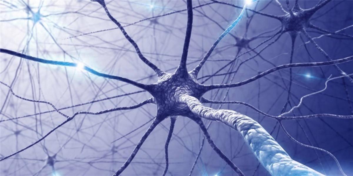 Esclerosis mu00faltiple
