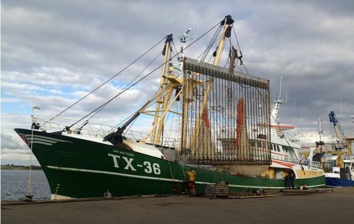 Pesca elu00e9ctrica europa