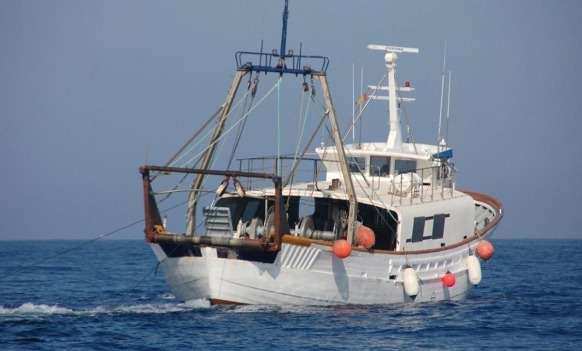 Pesca elu00e9ctrica parlamento europeo