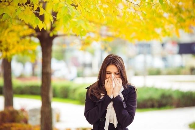 Alergia polen niveles catalunya 20032018