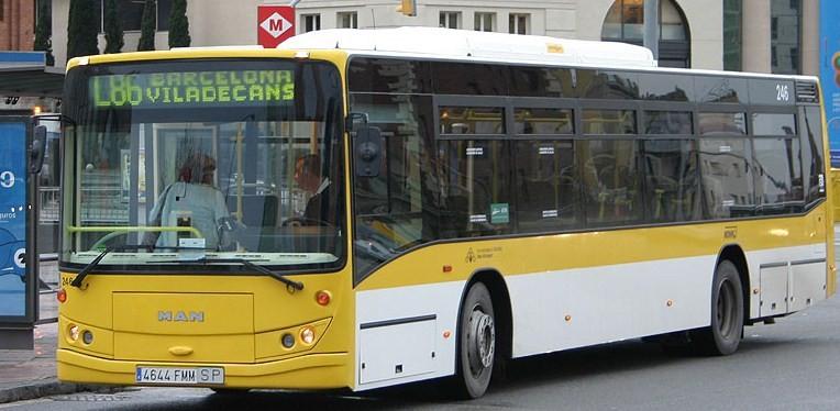 Buses 1 1