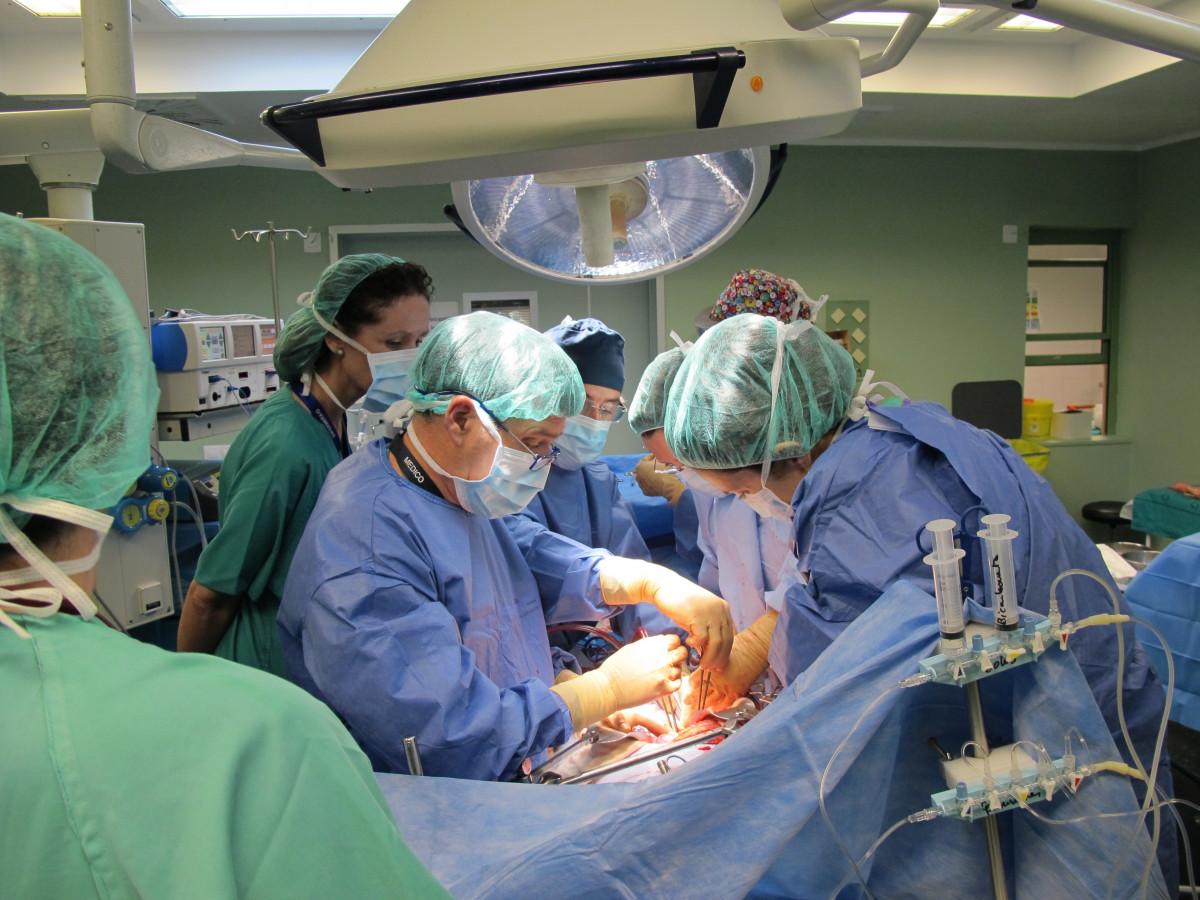 Investigadores descubren una alternativa factible al trasplante de hígado